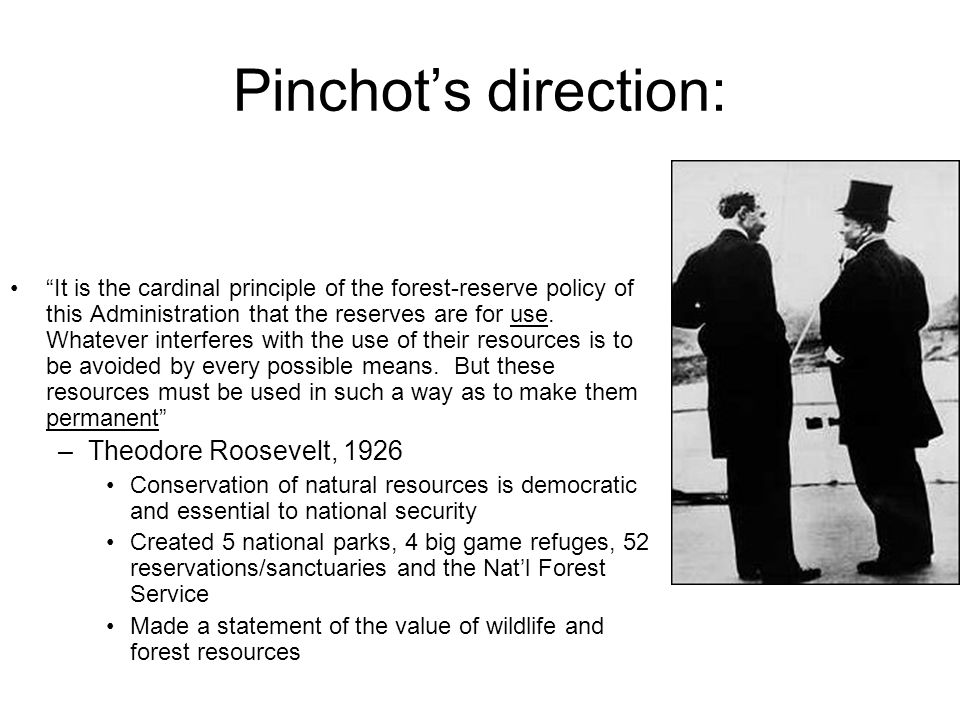 Pinchot's direction: It is the cardinal principle of the forest-reserve policy of this Administration that the reserves are for use.