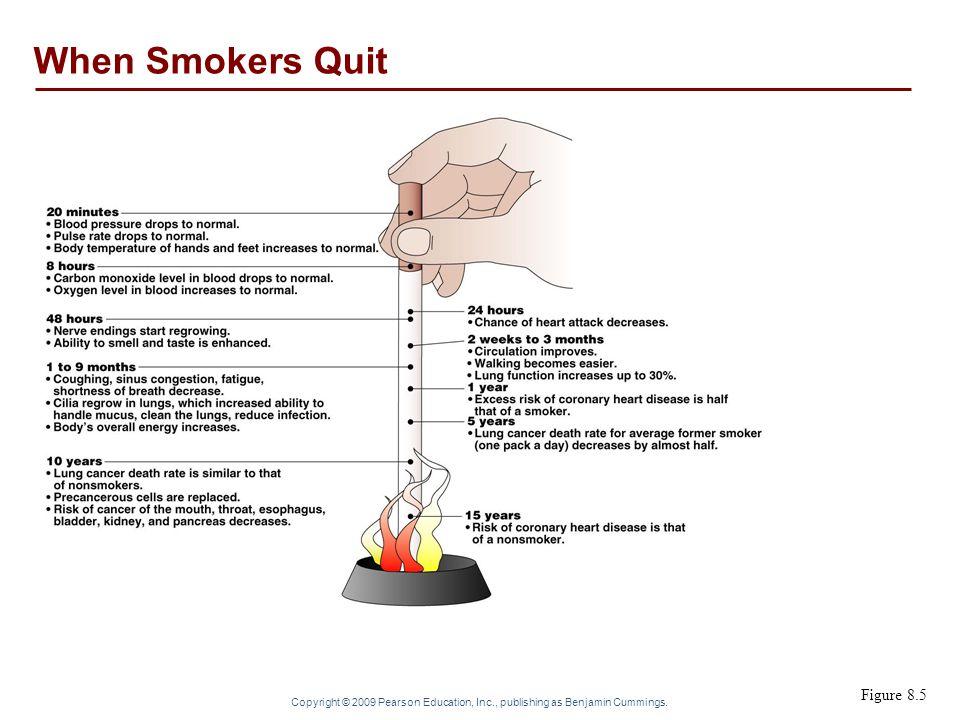 Copyright © 2009 Pearson Education, Inc., publishing as Benjamin Cummings. Figure 8.5 When Smokers Quit