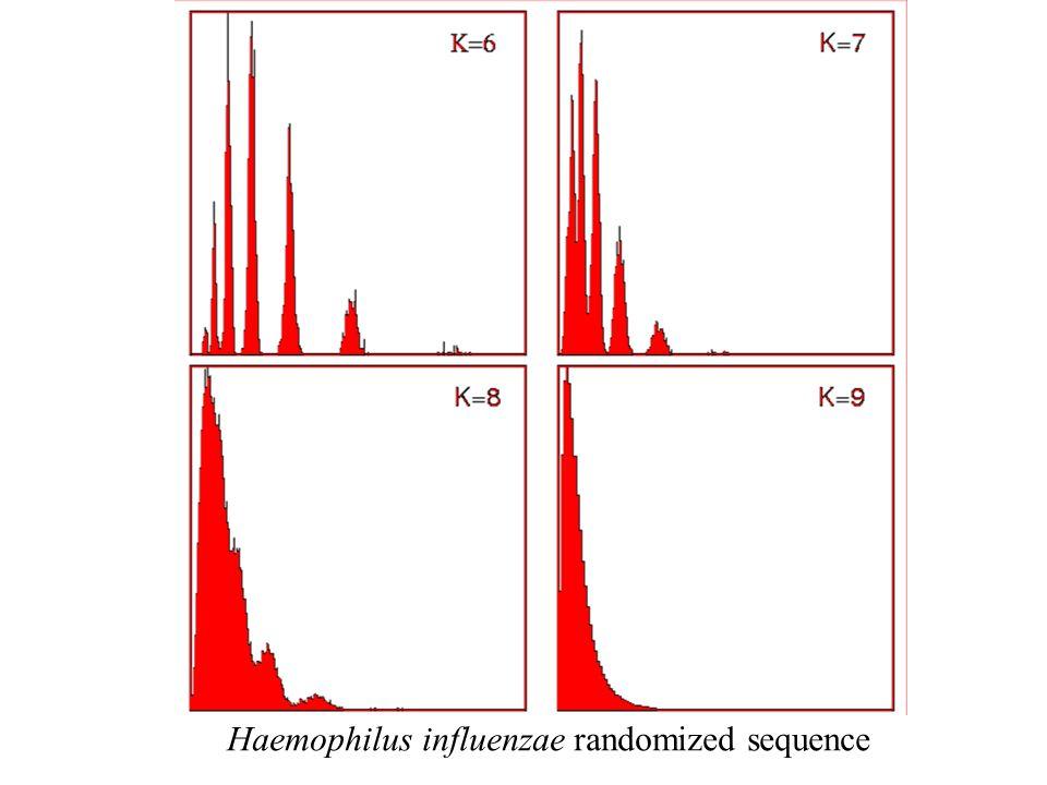 Haemophilus influenzae randomized sequence