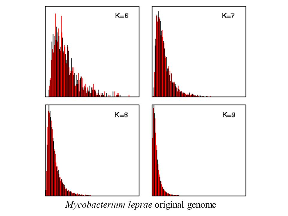 Mycobacterium leprae original genome
