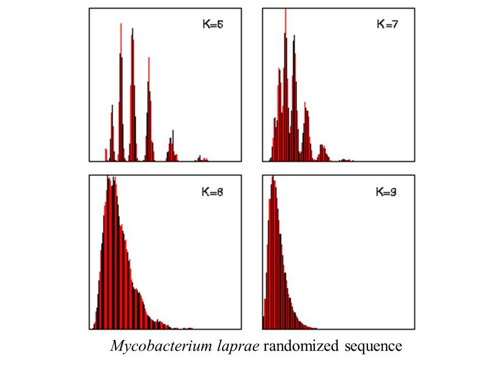 Mycobacterium laprae randomized sequence