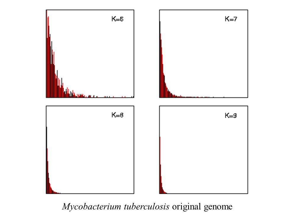 Mycobacterium tuberculosis original genome