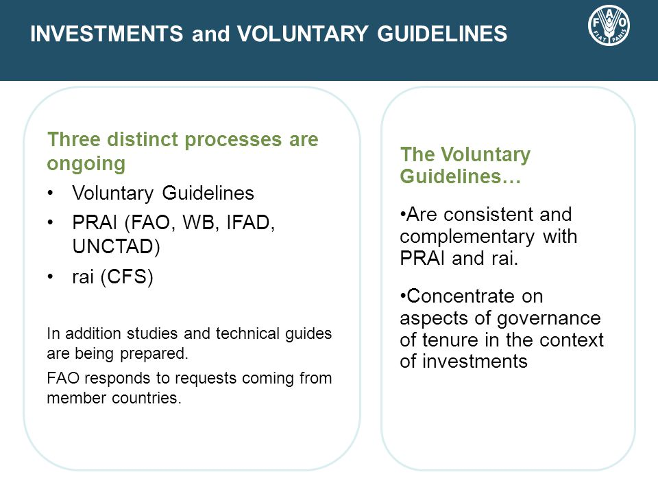 Three distinct processes are ongoing Voluntary Guidelines PRAI (FAO, WB, IFAD, UNCTAD) rai (CFS) In addition studies and technical guides are being prepared.