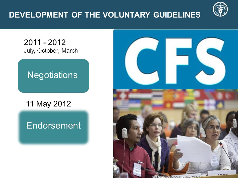 DEVELOPMENT OF THE VOLUNTARY GUIDELINES 2011 - 2012 July, October, March Negotiations Endorsement 11 May 2012