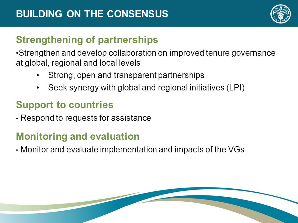 Strengthening of partnerships Strengthen and develop collaboration on improved tenure governance at global, regional and local levels Strong, open and transparent partnerships Seek synergy with global and regional initiatives (LPI) Support to countries Respond to requests for assistance Monitoring and evaluation Monitor and evaluate implementation and impacts of the VGs BUILDING ON THE CONSENSUS