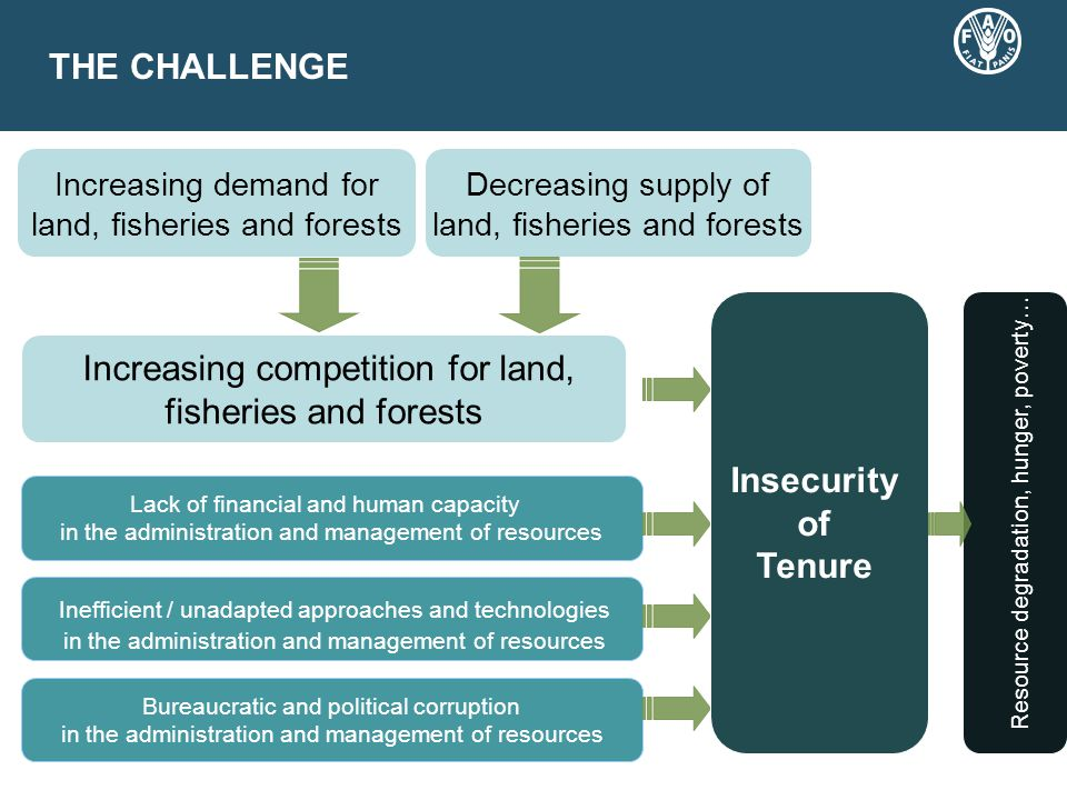 THE CHALLENGE Increasing demand for land, fisheries and forests Decreasing supply of land, fisheries and forests Lack of financial and human capacity in the administration and management of resources Inefficient / unadapted approaches and technologies in the administration and management of resources Bureaucratic and political corruption in the administration and management of resources Insecurity of Tenure Resource degradation, hunger, poverty… Increasing competition for land, fisheries and forests