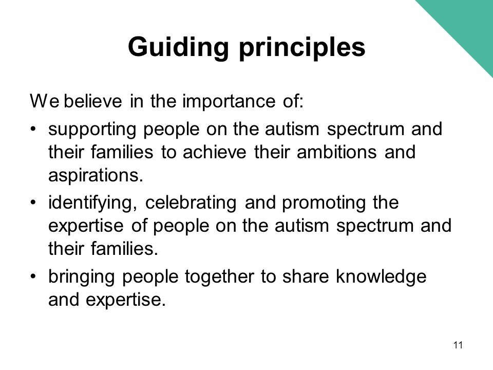 Guiding principles We believe in the importance of: supporting people on the autism spectrum and their families to achieve their ambitions and aspirat