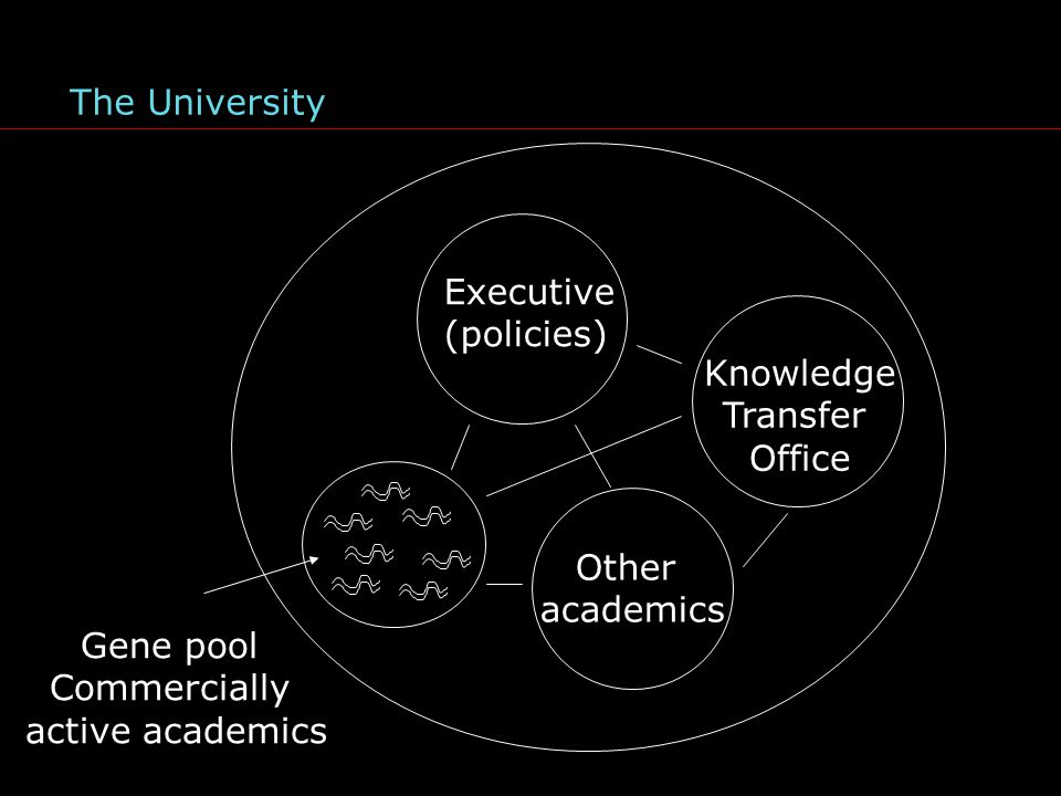 Executive (policies) Other academics Gene pool Commercially active academics The University Knowledge Transfer Office