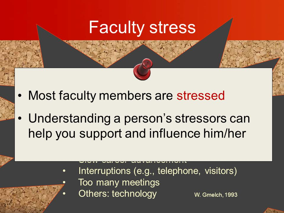 Faculty stress Overly high self-expectations Need for financial support for scholarship Not enough time to keep up with field Insufficient salary Pres
