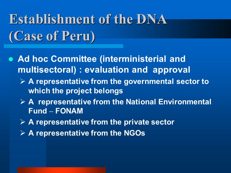 Establishment of the DNA (Case of Peru) Ad hoc Committee (interministerial and multisectoral) : evaluation and approval  A representative from the governmental sector to which the project belongs  A representative from the National Environmental Fund – FONAM  A representative from the private sector  A representative from the NGOs