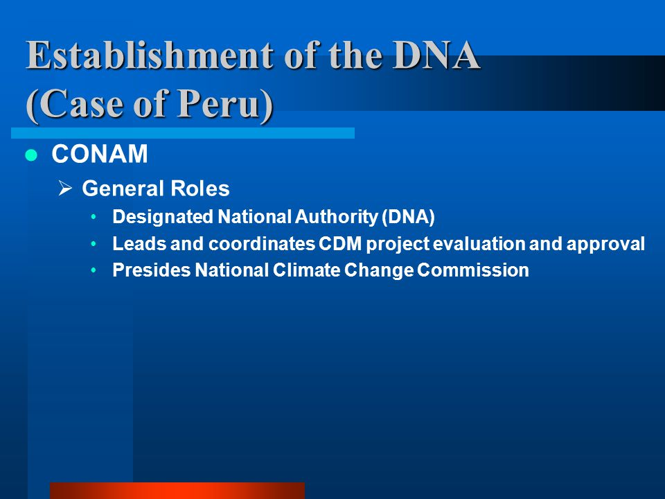 Establishment of the DNA (Case of Peru) CONAM  General Roles Designated National Authority (DNA) Leads and coordinates CDM project evaluation and approval Presides National Climate Change Commission
