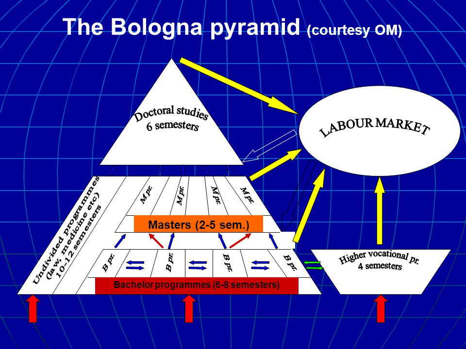 Bachelor programmes (6-8 semesters) Masters (2-5 sem.) The Bologna pyramid (courtesy OM)