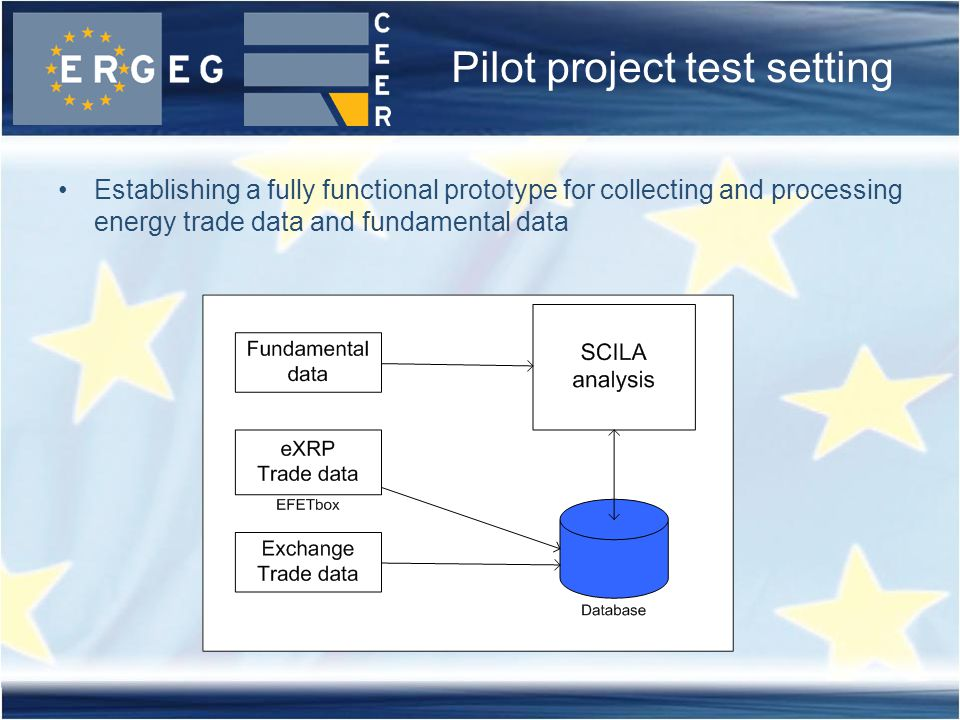 Pilot project test setting Establishing a fully functional prototype for collecting and processing energy trade data and fundamental data