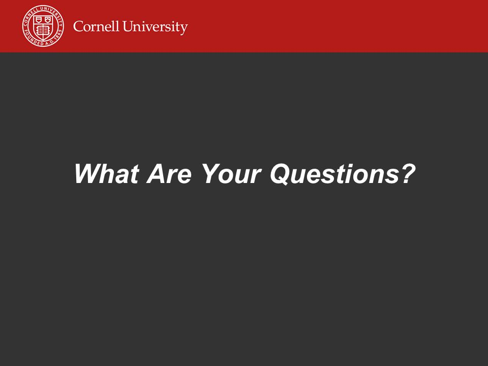 What Are Your Questions?