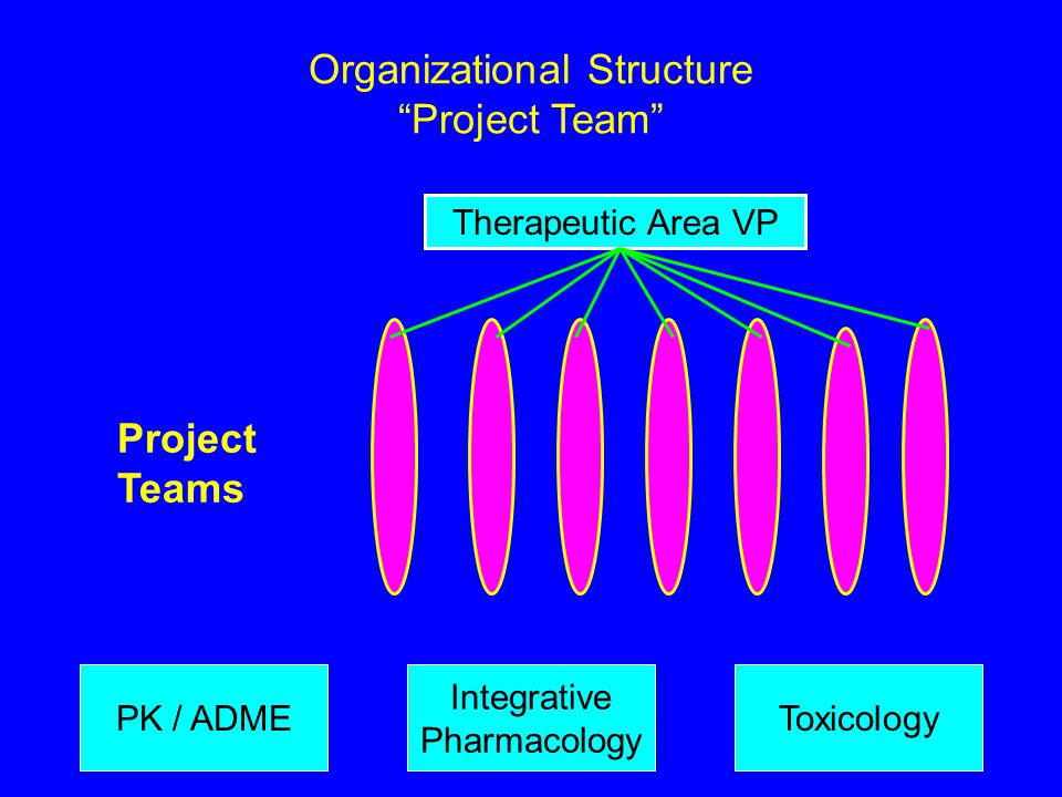 "Organizational Structure ""Project Team"" Project Teams PK / ADMEToxicology Integrative Pharmacology Therapeutic Area VP"