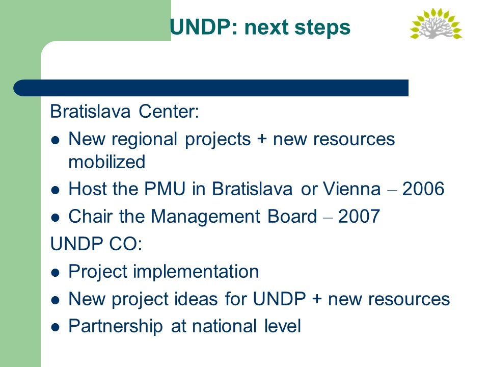 UNDP: next steps Bratislava Center: New regional projects + new resources mobilized Host the PMU in Bratislava or Vienna – 2006 Chair the Management Board – 2007 UNDP CO: Project implementation New project ideas for UNDP + new resources Partnership at national level