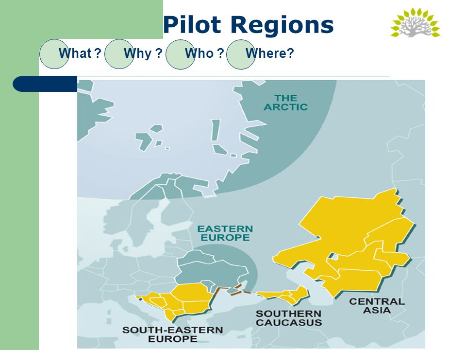 Pilot Regions What Why Who Where