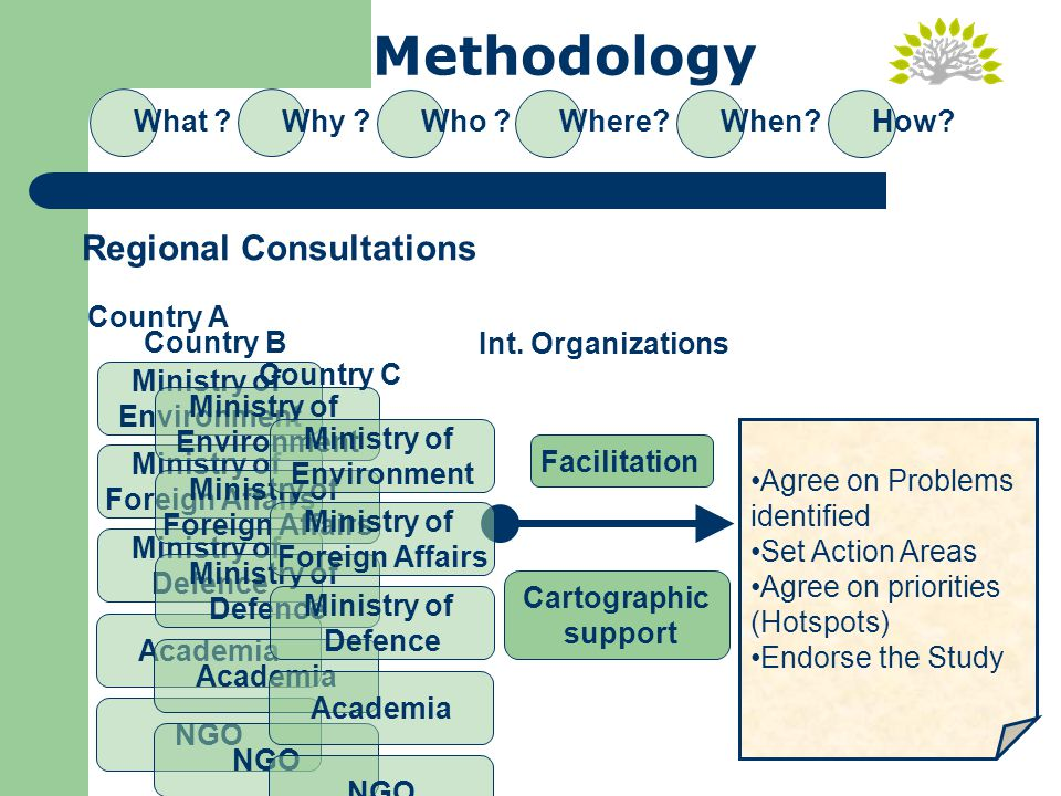Methodology What Why Who Where When How.