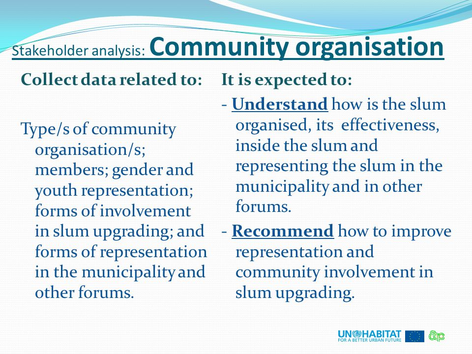 Stakeholder analysis: Community organisation Collect data related to: Type/s of community organisation/s; members; gender and youth representation; fo