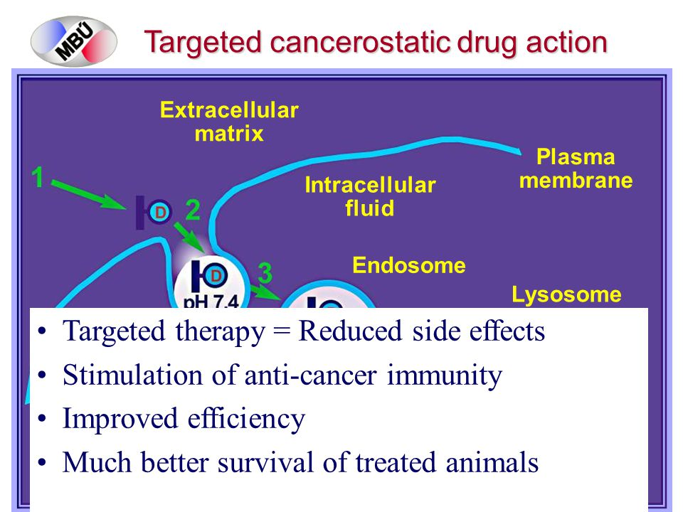 Plasma membrane Extracellular matrix Endosome Intracellular fluid Lysosome Targeted cancerostatic drug action rihova@biomed.cas.cz Targeted therapy = Reduced side effects Stimulation of anti-cancer immunity Improved efficiency Much better survival of treated animals
