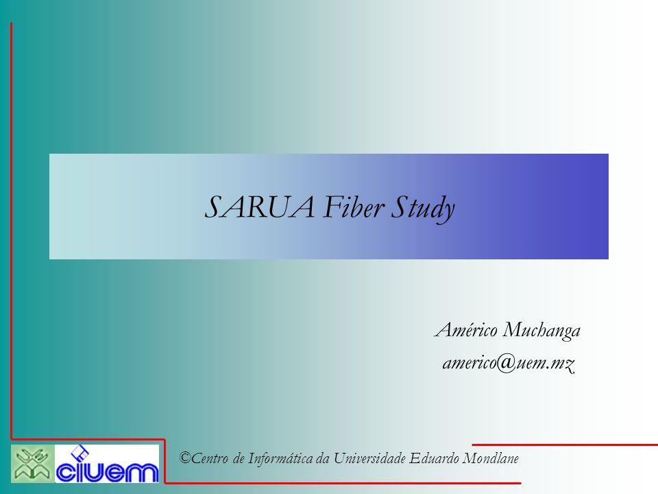 ©Centro de Informática da Universidade Eduardo Mondlane SARUA Fiber Study Américo Muchanga americo@uem.mz