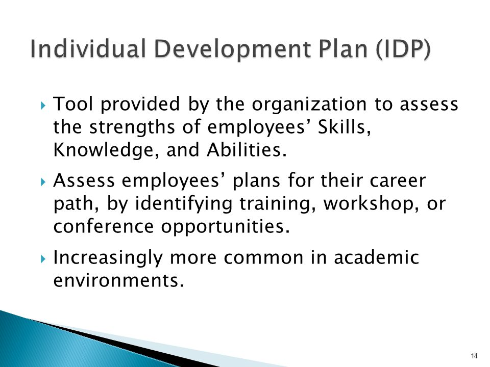  Tool provided by the organization to assess the strengths of employees' Skills, Knowledge, and Abilities.