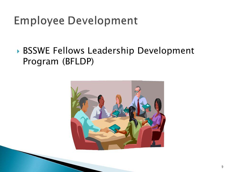  BSSWE Fellows Leadership Development Program (BFLDP) 9