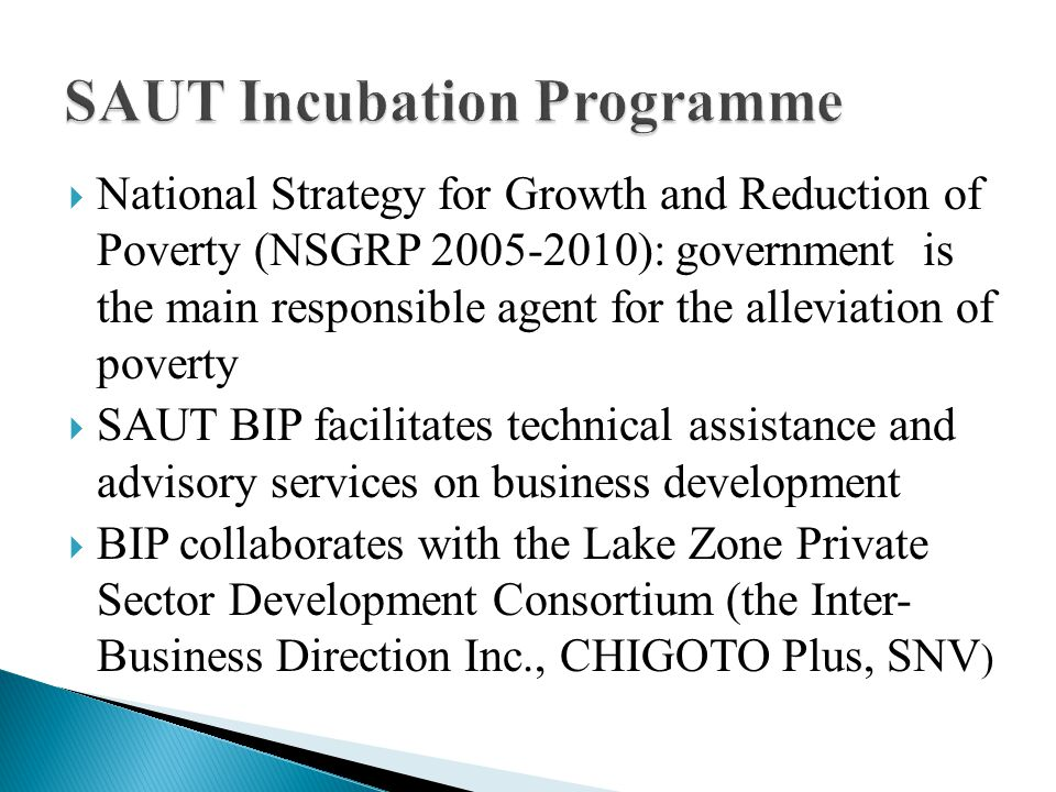  National Strategy for Growth and Reduction of Poverty (NSGRP 2005-2010): government is the main responsible agent for the alleviation of poverty  SAUT BIP facilitates technical assistance and advisory services on business development  BIP collaborates with the Lake Zone Private Sector Development Consortium (the Inter- Business Direction Inc., CHIGOTO Plus, SNV )