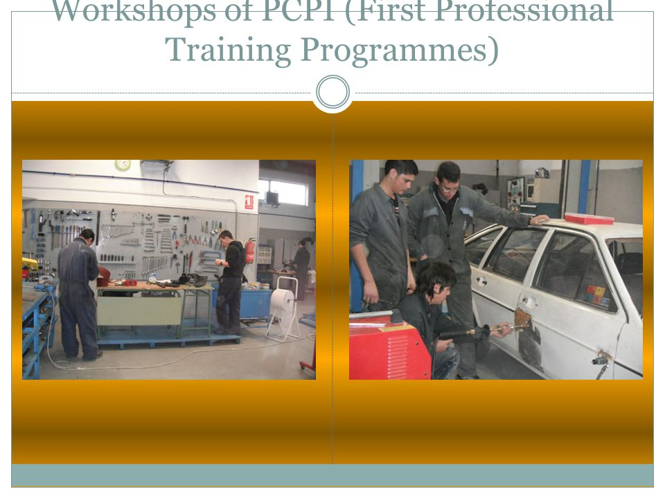 Workshops of PCPI (First Professional Training Programmes)