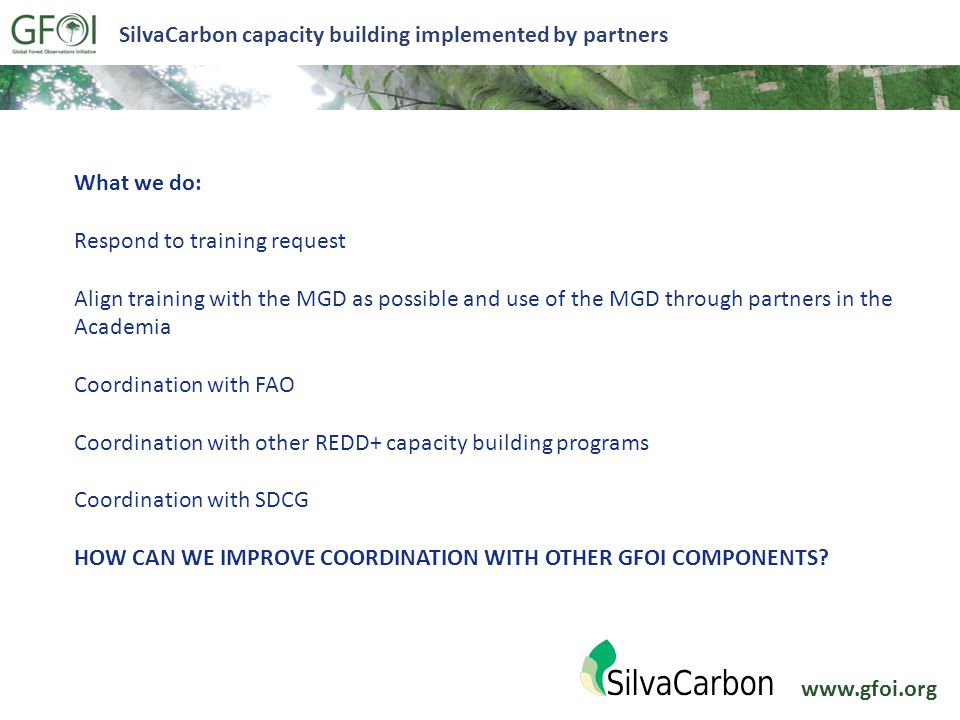 www.gfoi.org SilvaCarbon capacity building implemented by partners What we do: Respond to training request Align training with the MGD as possible and use of the MGD through partners in the Academia Coordination with FAO Coordination with other REDD+ capacity building programs Coordination with SDCG HOW CAN WE IMPROVE COORDINATION WITH OTHER GFOI COMPONENTS