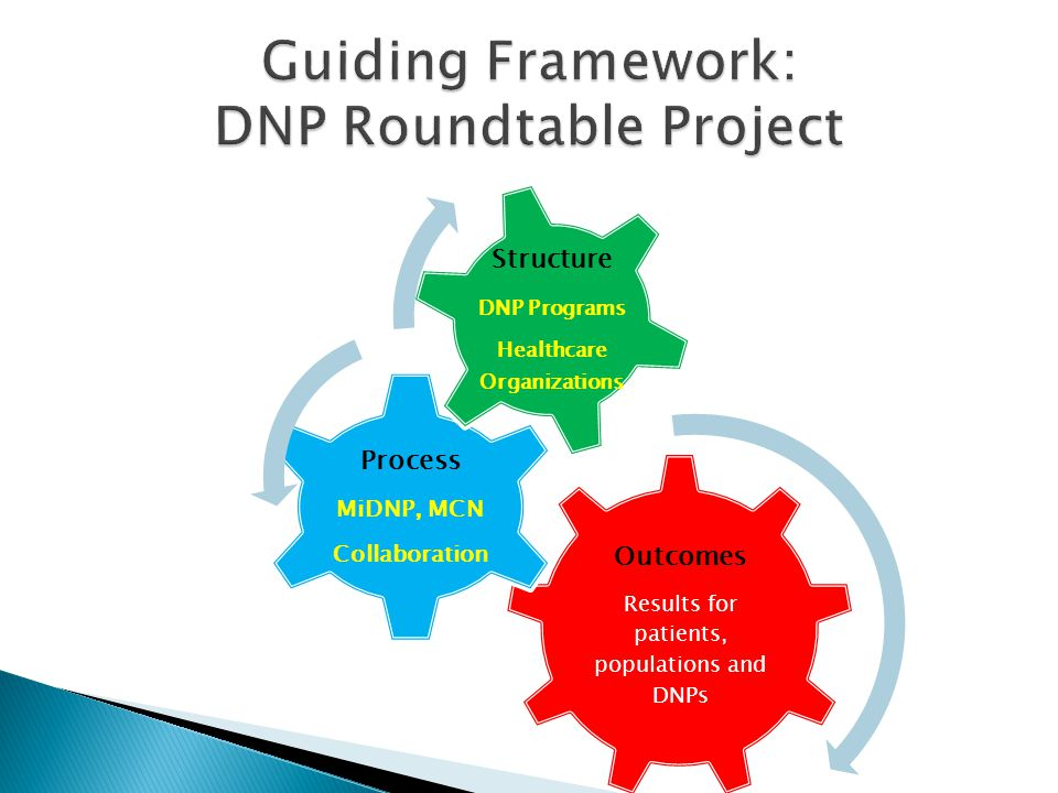  Follow up group work on implementation of recommendations  Yearly conference and report back with new initiatives  Continue the conversation  Showcase DNP excellence in practice  Complete White Paper