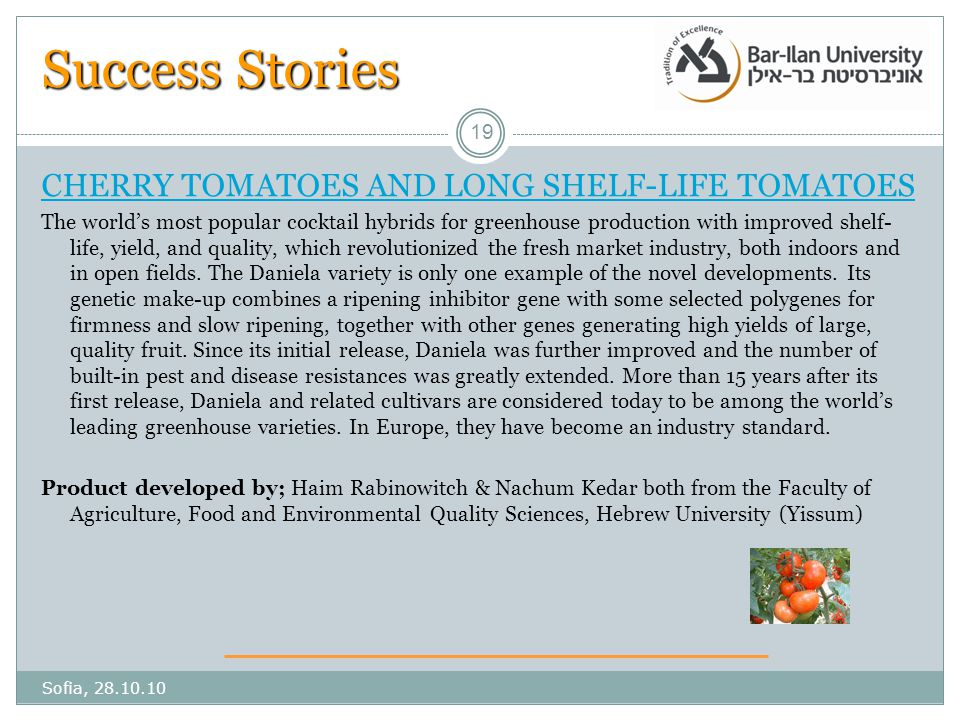Success Stories CHERRY TOMATOES AND LONG SHELF-LIFE TOMATOES The world's most popular cocktail hybrids for greenhouse production with improved shelf- life, yield, and quality, which revolutionized the fresh market industry, both indoors and in open fields.
