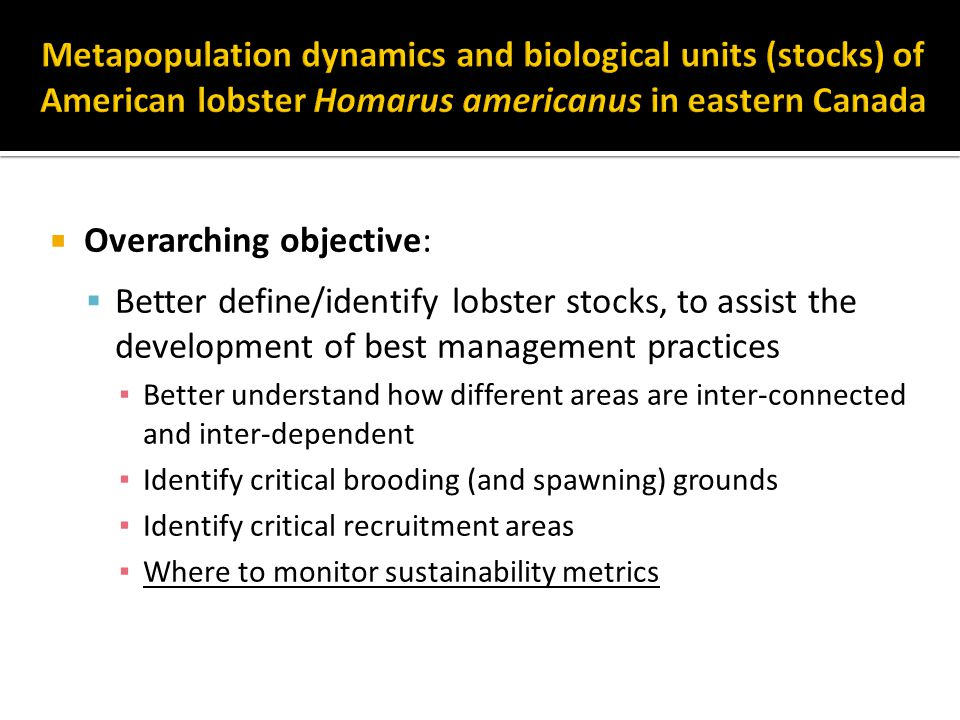  Overarching objective:  Better define/identify lobster stocks, to assist the development of best management practices ▪ Better understand how different areas are inter-connected and inter-dependent ▪ Identify critical brooding (and spawning) grounds ▪ Identify critical recruitment areas ▪ Where to monitor sustainability metrics