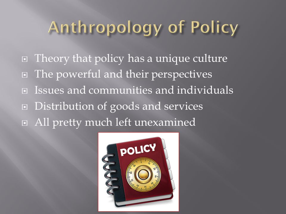  Theory that policy has a unique culture  The powerful and their perspectives  Issues and communities and individuals  Distribution of goods and services  All pretty much left unexamined
