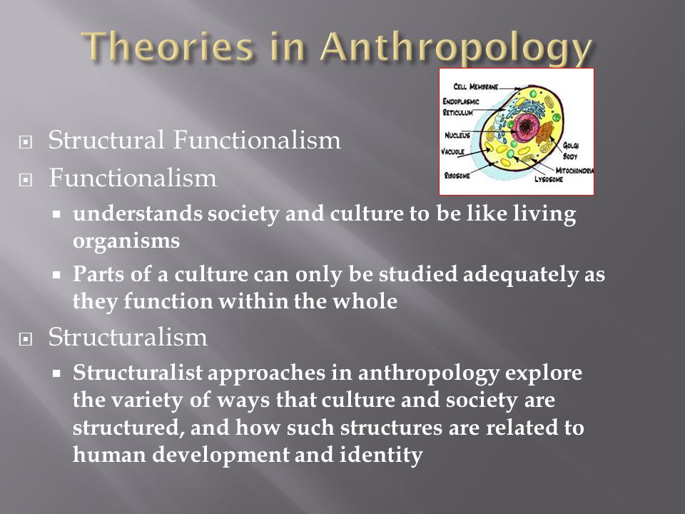  Structural Functionalism  Functionalism  understands society and culture to be like living organisms  Parts of a culture can only be studied adequately as they function within the whole  Structuralism  Structuralist approaches in anthropology explore the variety of ways that culture and society are structured, and how such structures are related to human development and identity