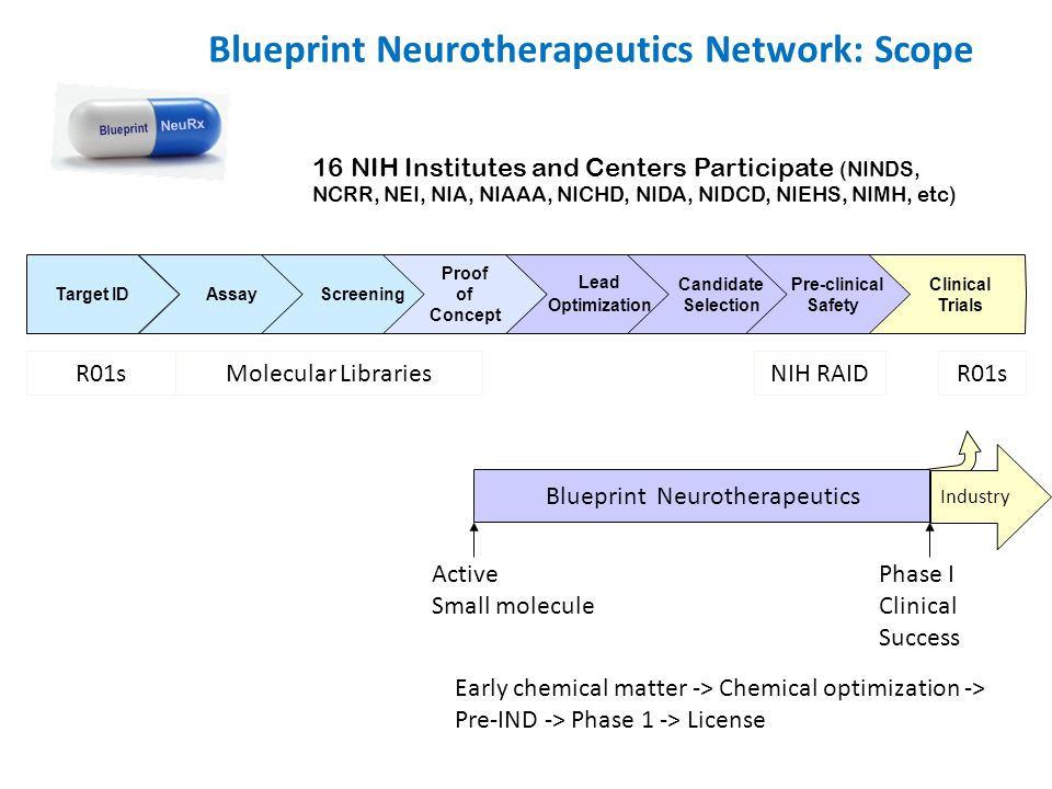 Clinical Trials Target ID Assay Screening Proof of Concept Lead Optimization Candidate Selection Pre-clinical Safety Molecular LibrariesNIH RAID Blueprint Neurotherapeutics Active Small molecule Phase I Clinical Success R01s Blueprint NeuRx Industry Early chemical matter -> Chemical optimization -> Pre-IND -> Phase 1 -> License Blueprint Neurotherapeutics Network: Scope 16 NIH Institutes and Centers Participate (NINDS, NCRR, NEI, NIA, NIAAA, NICHD, NIDA, NIDCD, NIEHS, NIMH, etc)