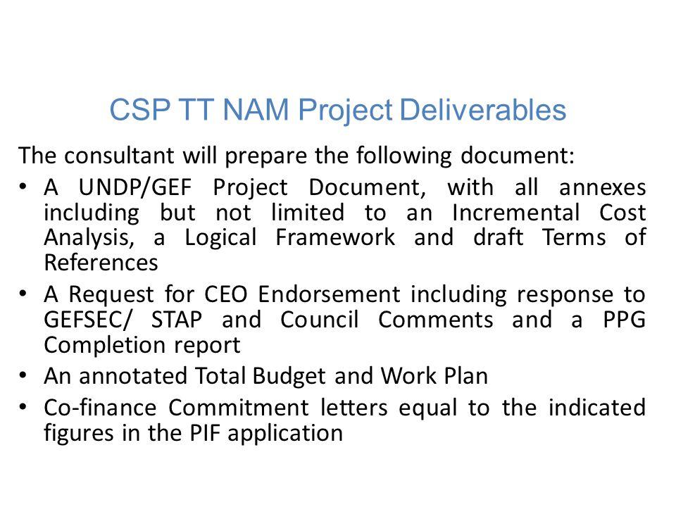Indicative Financing Plan Summary ($)