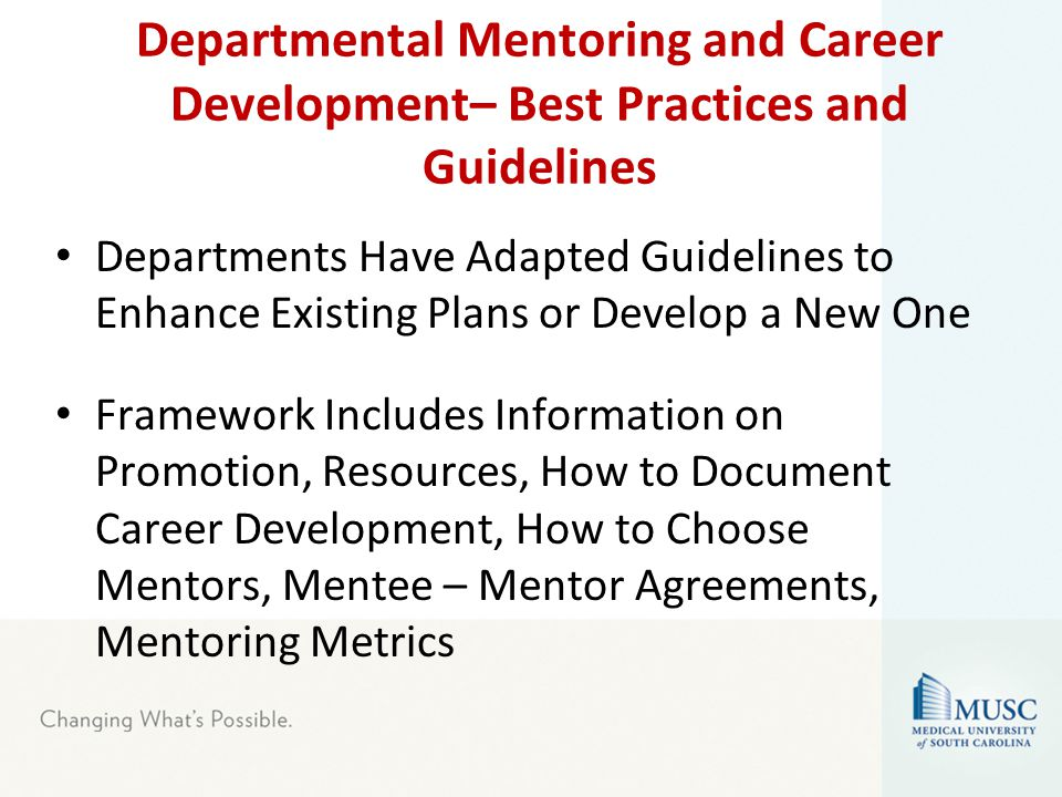 Departmental Mentoring and Career Development– Best Practices and Guidelines Departments Have Adapted Guidelines to Enhance Existing Plans or Develop a New One Framework Includes Information on Promotion, Resources, How to Document Career Development, How to Choose Mentors, Mentee – Mentor Agreements, Mentoring Metrics