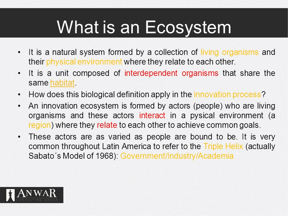 What is an Ecosystem It is a natural system formed by a collection of living organisms and their physical environment where they relate to each other.