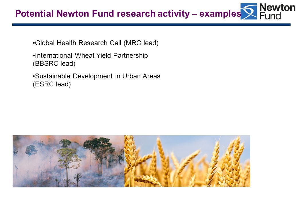 Potential Newton Fund research activity – examples Global Health Research Call (MRC lead) International Wheat Yield Partnership (BBSRC lead) Sustainable Development in Urban Areas (ESRC lead)