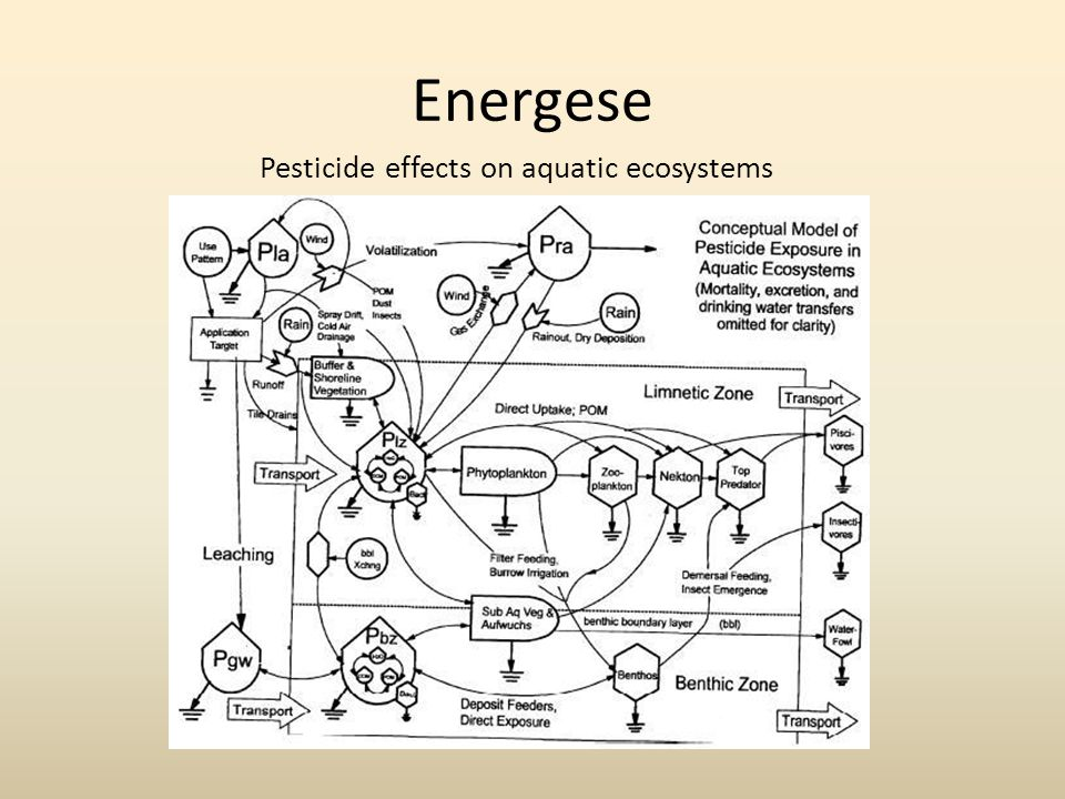 Energese Pesticide effects on aquatic ecosystems