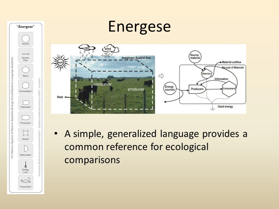 Energese Simple or complex….Provide a conceptual framework for ecosystem function.