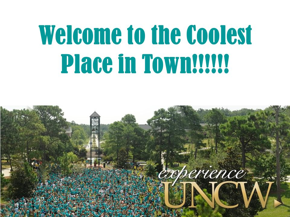 Welcome to the Coolest Place in Town!!!!!! 1