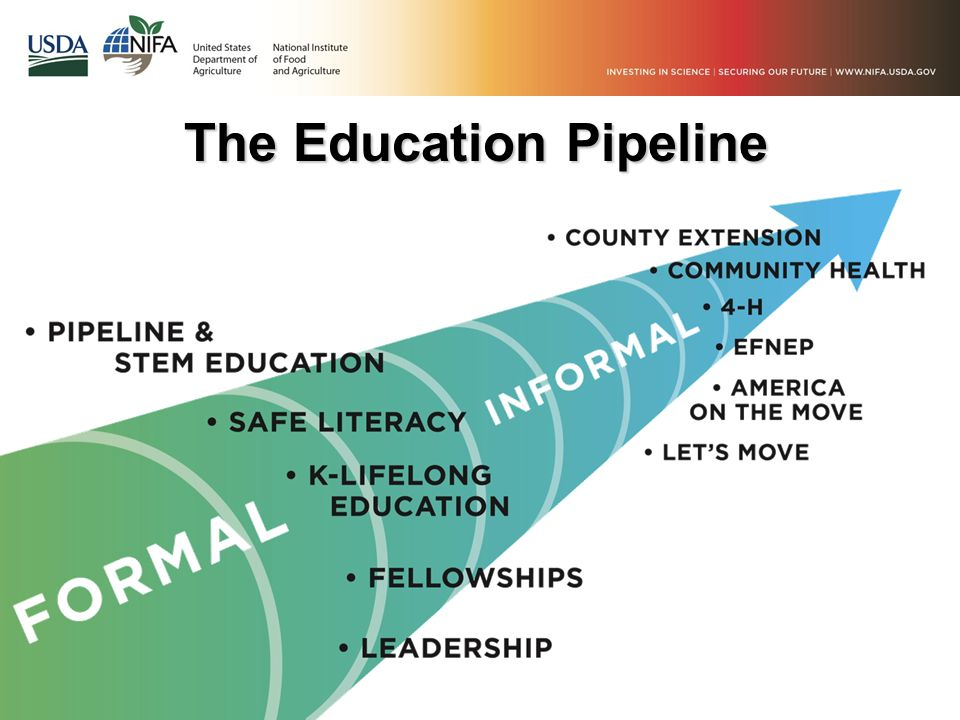 The Education Pipeline