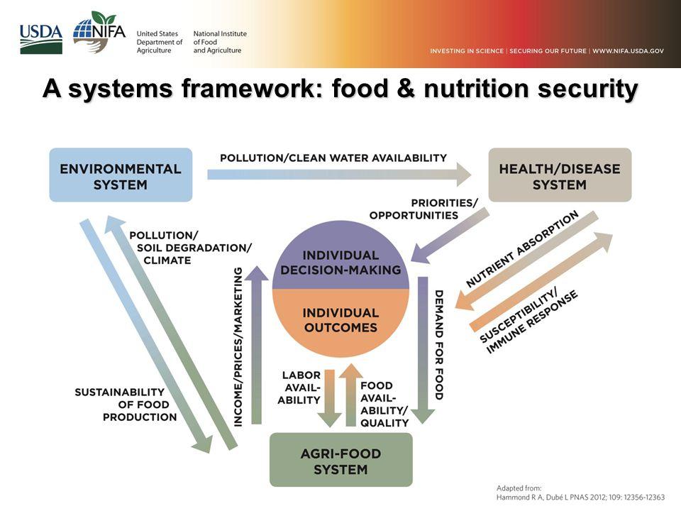 A systems framework: food & nutrition security