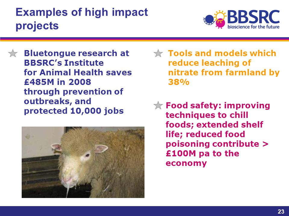 Examples of high impact projects 23 Bluetongue research at BBSRC's Institute for Animal Health saves £485M in 2008 through prevention of outbreaks, and protected 10,000 jobs Tools and models which reduce leaching of nitrate from farmland by 38% Food safety: improving techniques to chill foods; extended shelf life; reduced food poisoning contribute > £100M pa to the economy