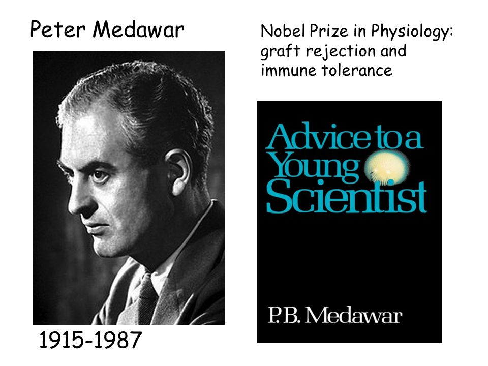 Peter Medawar 1915-1987 Nobel Prize in Physiology: graft rejection and immune tolerance