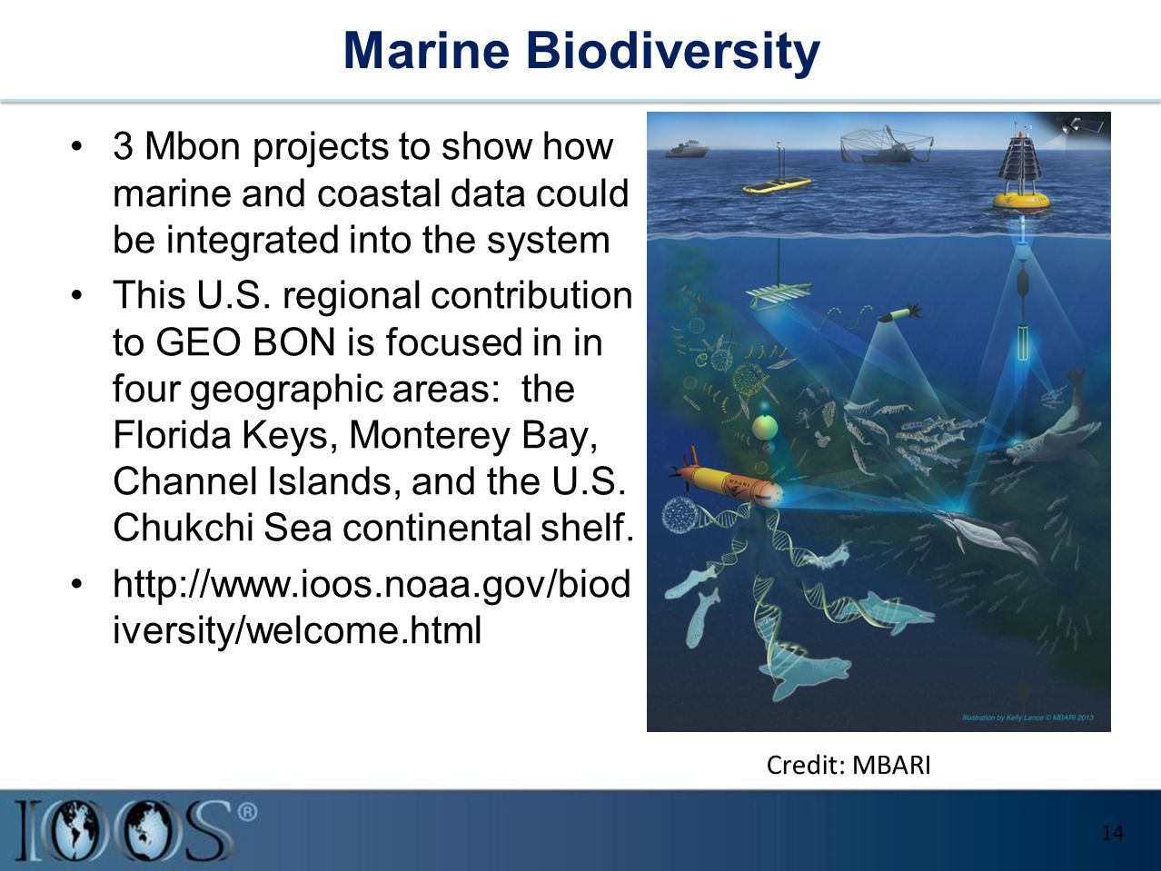 Marine Biodiversity 3 Mbon projects to show how marine and coastal data could be integrated into the system This U.S.