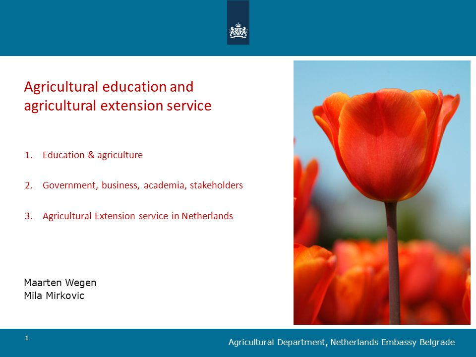1 Agricultural education and agricultural extension service Maarten Wegen Mila Mirkovic Agricultural Department, Netherlands Embassy Belgrade 1.Education & agriculture 2.Government, business, academia, stakeholders 3.Agricultural Extension service in Netherlands