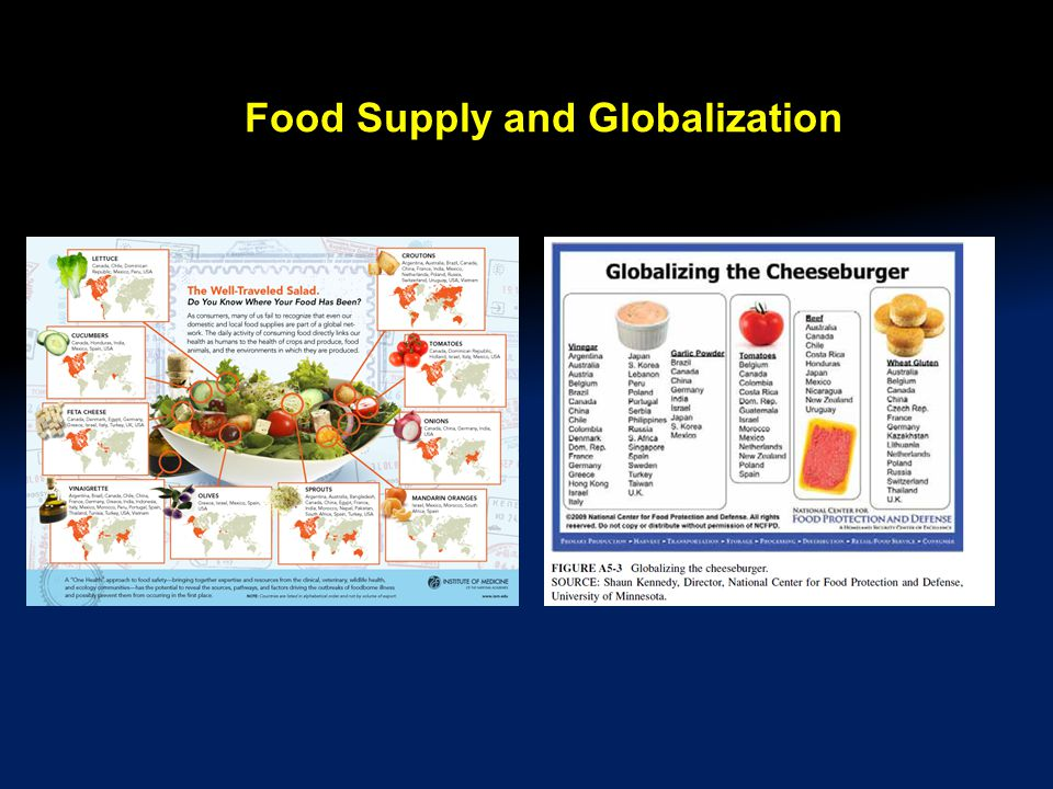 Food Supply and Globalization